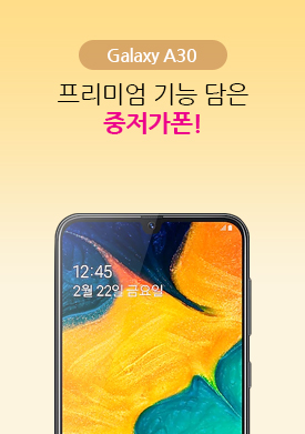 [모바일]프리미엄 기능 담은 중저가폰!